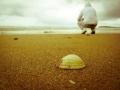 surf_santander_playadesomo_5.jpg